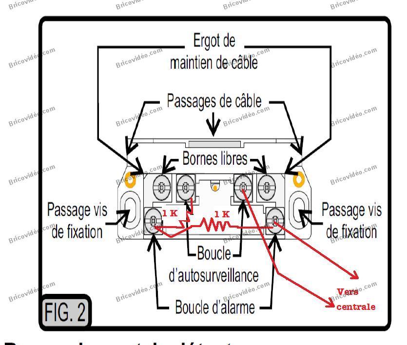 schéma Câblage becuwe alarme Galaxy