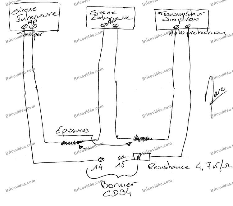 schéma raccordement sirène transmeteur
